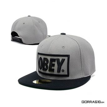 Obey-Gris